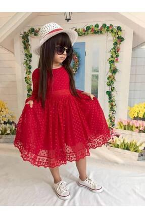 Buse&Eylül Bebe Kırmızı Şapkalı Tüllü Güpür Detaylı Kız Çocuk Elbisesi 1