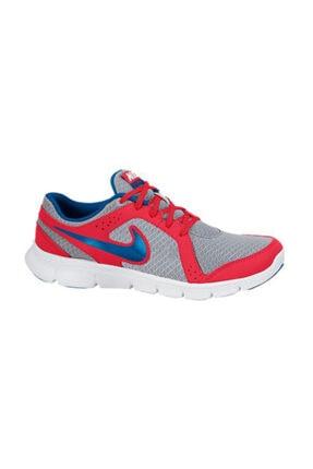 Nike Kadın Gri Flex Experıence  Spor Ayakkabı 599340-010 0