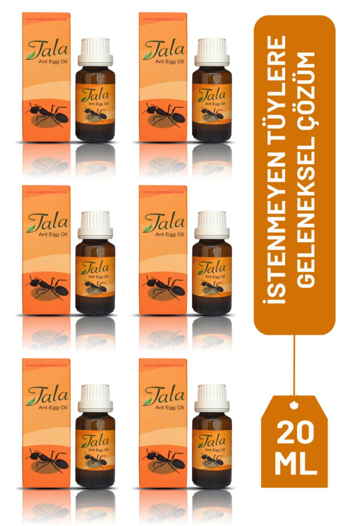 6 Adet Karınca Yağı 20 ml Orjinal