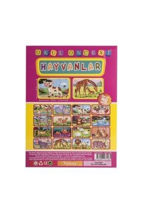 Diytoy Dıy-toy Flash Cards Hayvanlar 3