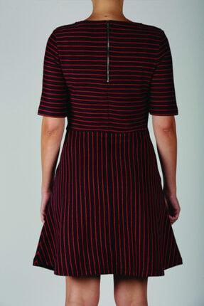 Blue Miles Kadın Kırmızı Lacivert Çizgili Bele Oturan Elbise 2