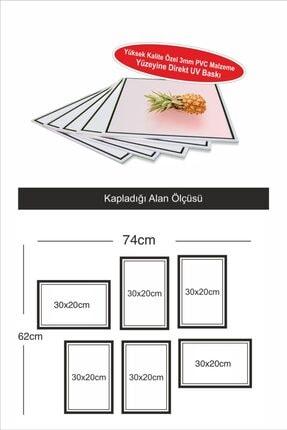 Dekor Sevgisi 6 Parça Çerçeve Görünümlü Tropikal Kaktüs Flamingo Pvc Tablo Seti 30x20cm 3mm 1