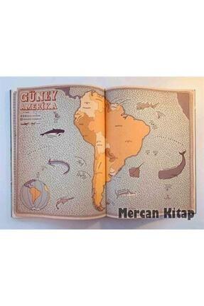 Domingo Yayınevi Atlas Kıtalar Denizler Kültürler Arası Yolculuk Rehberi 4