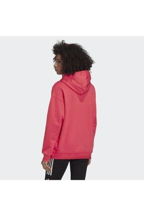 adidas Adicolor Kadın Sweatshirt - Gd2439 1