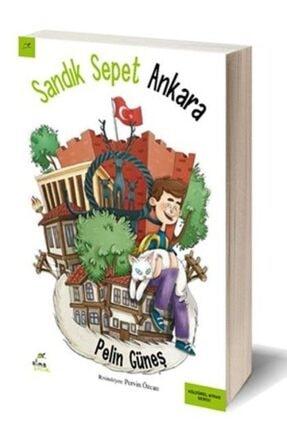 Sandık Sepet Ankara KTPZX10213