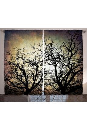Orange Venue Ağaçlar Perde Yansıyan Ağaç Silüeti 0