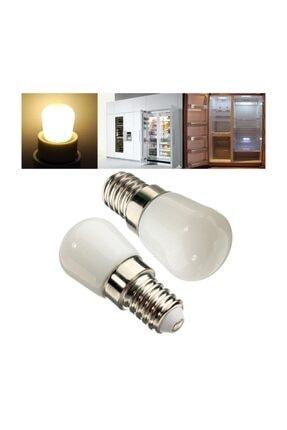 Cata Tuz Lambası Buzdolabı Ampulü Led Ampul 2 Watt E14 Duy Beyaz Işık 1
