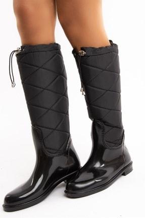 Fox Shoes Çizme