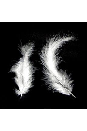 araget Kuş Tüyü Beyaz Renk 100 Adet 0