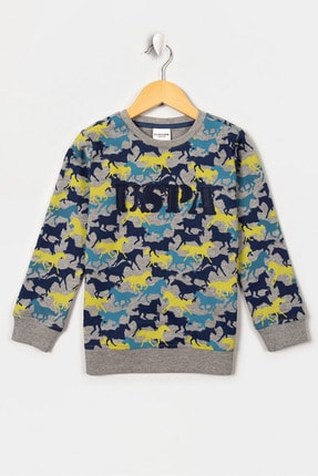 US Polo Assn Sweatshirt