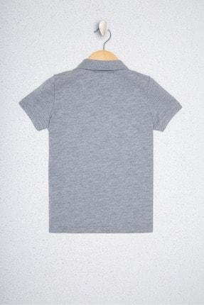 US Polo Assn Gri Erkek Çocuk T-Shirt 1