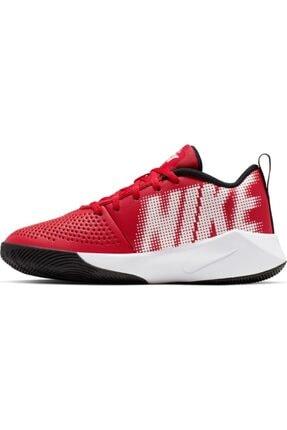 Nike Nıke Team Hustle Quıck 2 (gs) Basketbol Ayakkabısı At5298-600 3