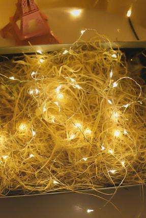 Lion 3 Metre Peri Led Işık + 15 Adet Minik Mandal Hediyeli 3