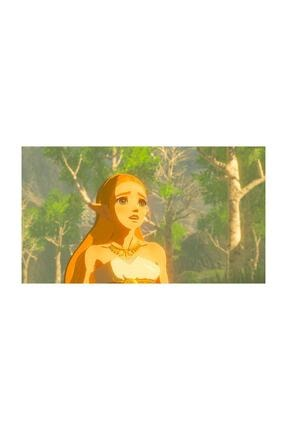 Nintendo The Legend Of Zelda : Breath Of The Wild Switch Oyun 2