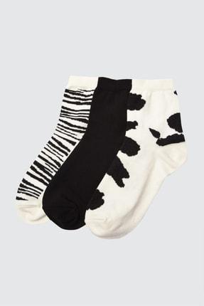 TRENDYOLMİLLA 3'lü Çok Renkli Örme Çorap TWOAW21CO0127 0