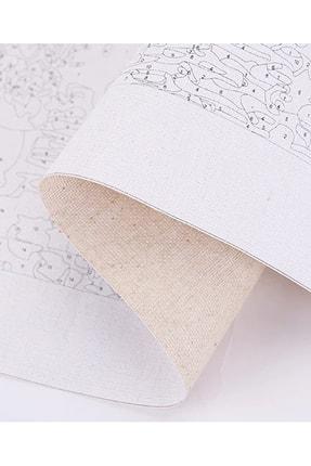 MARKSREYON Sayılarla Boyama Tablo Seti 45x55 Cm Kanvas Fırça Boya Dahil 3