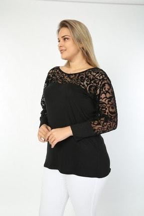 EGZ BUTİK Kadın Siyah Osmanlı Dantel Büyük Beden Bluz 2