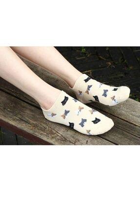 Zirve Kadın Desenli Patik Çorap 5'li Antibakteriyel Extra Soft 2