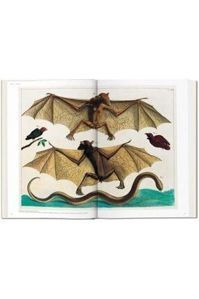 Taschen Albertus Seba. Cabinet Of Natural Curiosities Hardcover - Kitap 3