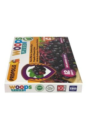 Woops Plus Kara Mürver, Propolis, Afrika Sardunyası, C Vitamini Ve Çinko Içeren Portakal Aromalı 12'li Pastil 1
