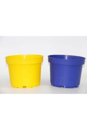 Sarı Lacivert Saksı Seti - 2 Renk 10 Saksı PBL916
