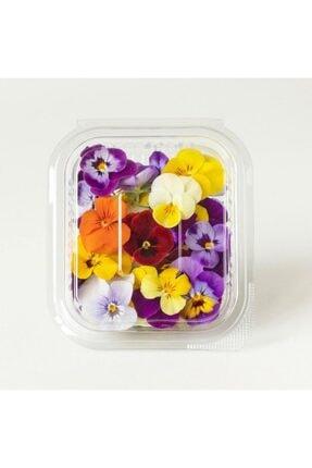 Mimi Çiftliği Yenilebilir Çiçek Menekşe (Pakette 30 Ad) 0