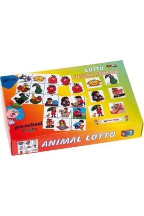 Lotto Resimli Tombala 6018279