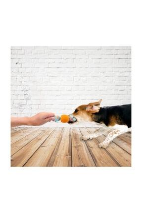 İREM Yavru Köpekler Için Kemirme Ipi Oyuncaklı 1
