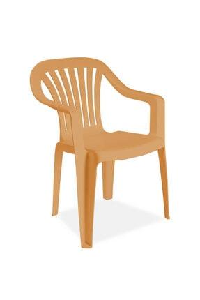 Papatya Mobilya Tropik Koltuk Teak - Plastik Bahçe Sandalyesi 0