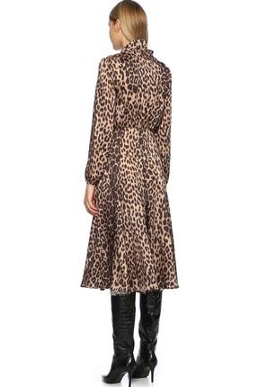 Network Kadın Midi Boy Camel Siyah Leopar Desenli Elbise 1070792 2