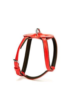 Doggie Konfor Spıder Deri Göğüs Tasması 1,5x45-50cm Red 0