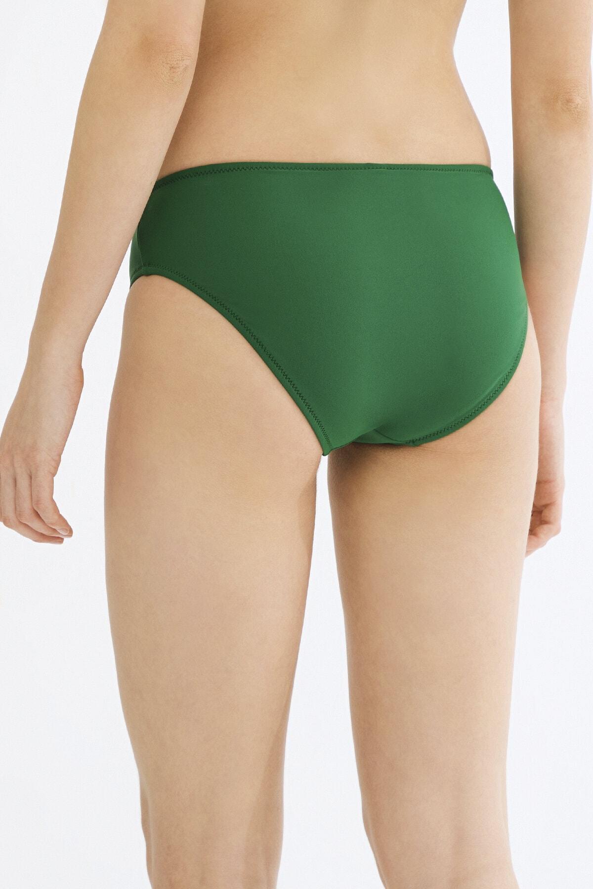 Penti Kadın Yeşil Basic Cover Bikini Altı 2