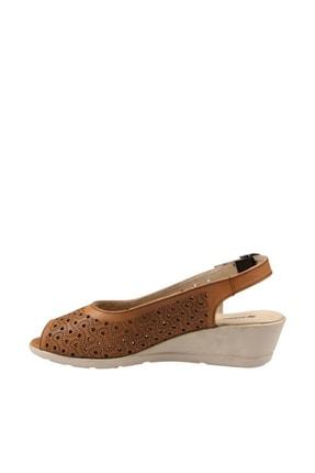 Hammer Jack Taba Kadın Terlik / Sandalet 378 33444-Z 1