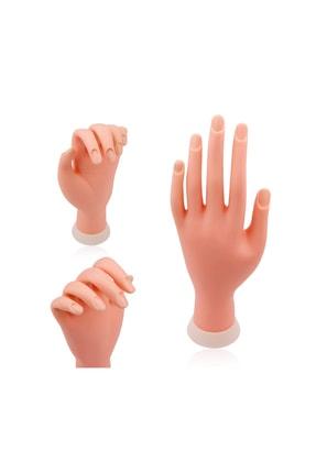 ROSEVELT Maket El Protez Tırnak Pratik Yapma Eli 1