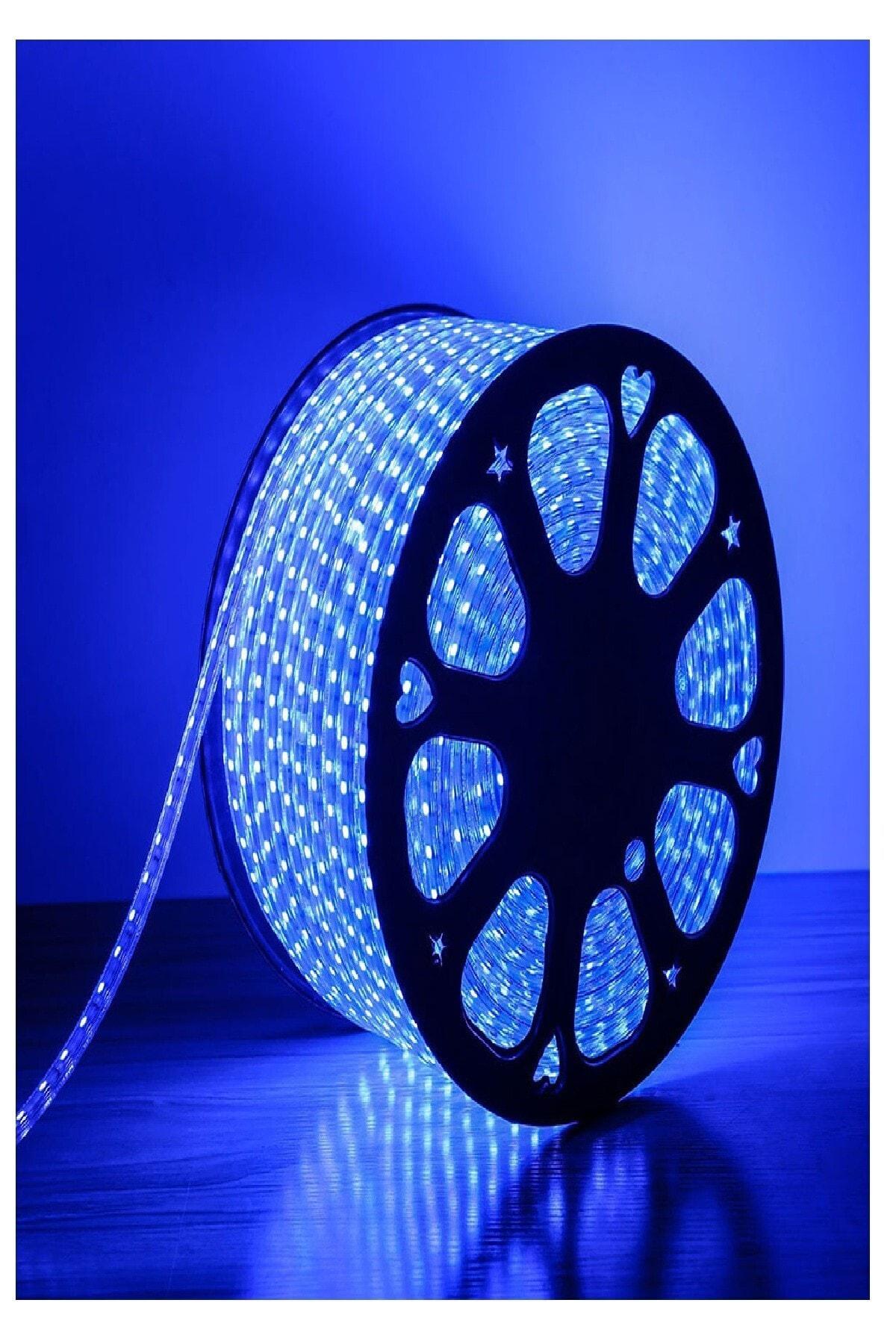 Flexible Strip Hortum Şerit Led Işık - 220 Volt Enerji Fişli - Mavi - 2 Metre