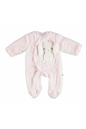 Baby Rabbit Tulum resmi