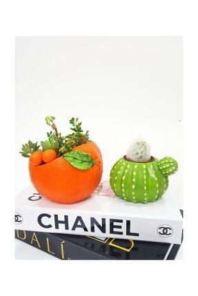 3D Dekoratif 2'li Set Portakal Ve Kaktüs Tasarımlı Sukulent Saksı 0