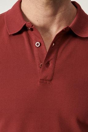 Altınyıldız Classics Polo Yaka Cepsiz Slim Fit Dar Kesim %100 Koton Düz Tişört 3