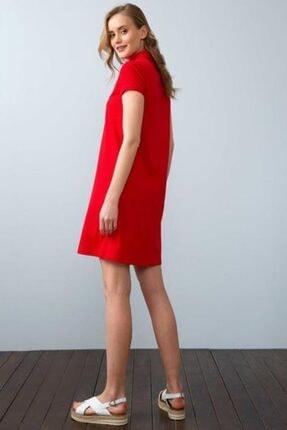 US Polo Assn Kadın Kırmızı Örme Elbise 949478 Mıso 030 1