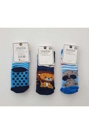 Desenli Çorap Çorap-001