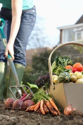 İGSAŞ K-S Potasyum Tiyosülfat Bahçe Çiçek Bitki Meyve Sebze Suda Çözünür Sıvı Kükürt Gübresi 25 kg 2