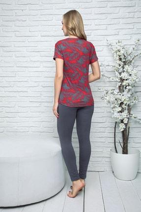 MyBen Kadın Bordo Renkli Kısa Kollı Taytlı Pijama Takımı 28241 2