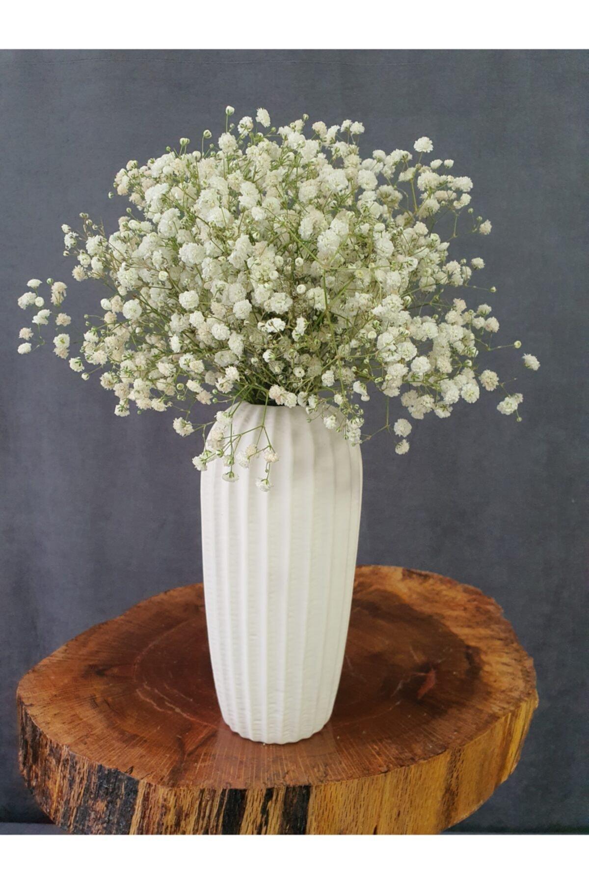 Kuru Çiçek Şoklanmış Cipso Beyaz 45 cm