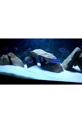 Kanki Pet Akvaryum Kumu 1 - 2 Mm Beyaz Kalsit Silis 1 Kg 0
