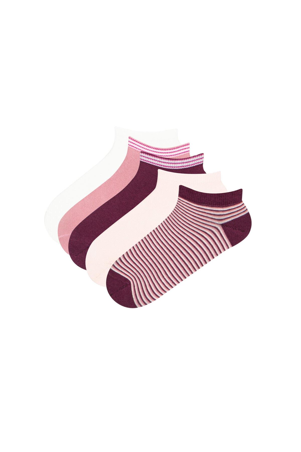 Penti Kadın Pembe - Çok Renkli Çember 5Li Patik Çorap 0