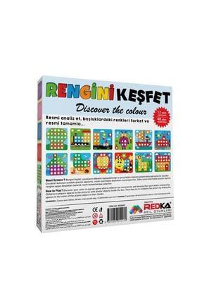 Redka Rengini Keşfet Eğitici Oyun +2 3
