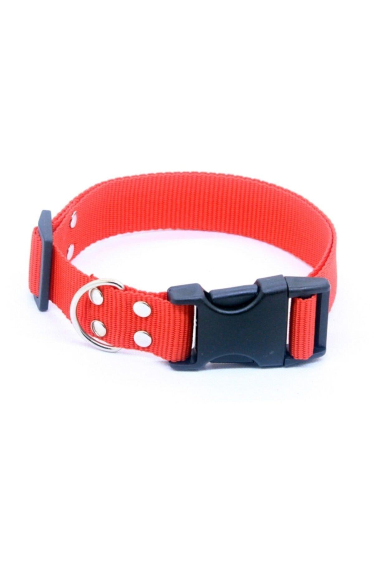 Köpek Boyun Tasması Ayarlanabilir 32-52 Cm Kırmızı