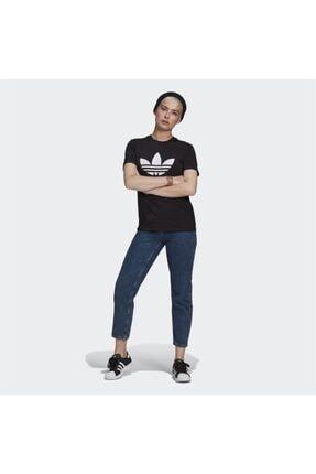 adidas Adicolor Classics Trefoil Kadın Tişört 2