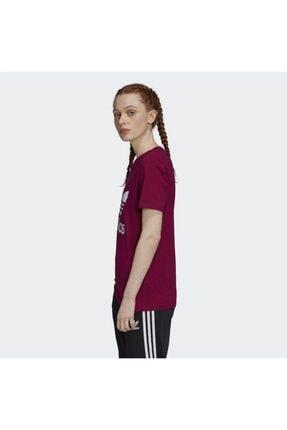 adidas Kadın Bordo Trefoil Tişört 3