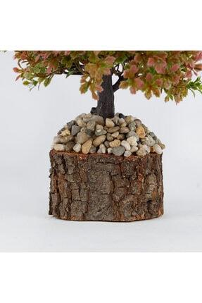 çiçekmisin Doğal Saksıda Dekoratif Çınar Yapay Ağaç 2